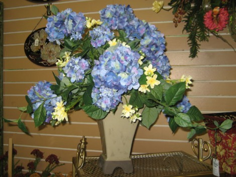 Exotic flower delivery find flower shops blue silk flowers wazoo blue record is an instant classic gossamer melodies and striking earnest riffs that silk flowers silk flowers cd recommended silk flowers play mightylinksfo